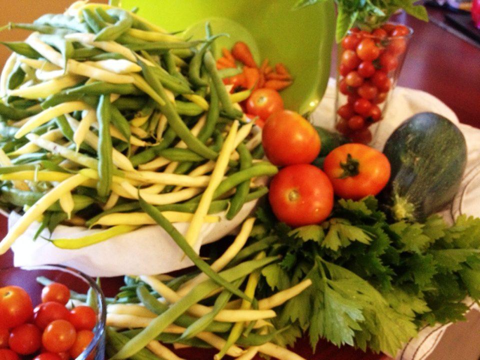 friday harvest2